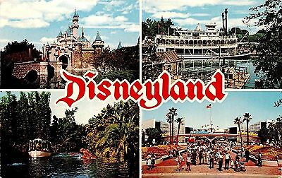Disneyland Multi Scene Chrome Postcard