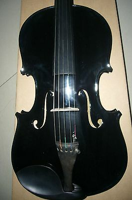 New 5 strings electric and acoustic viola