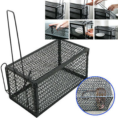 1 X Rat Catcher Spring Cage Trap Humane Large Live Animal Rodent Indoor Outdoor