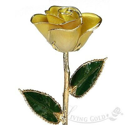 New Valentine's Day Real Rose Yellow Lacquer Natural Flower Gift 24K Gold Trim