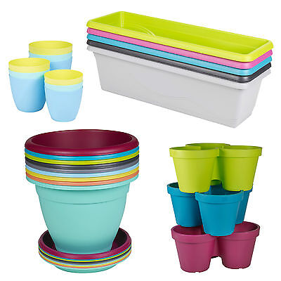 Assorted Plastic Plant Flower Pot Garden Holder Pots Planter Herb Coloured NEW