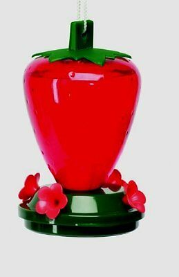 Cherry Valley  MADE IN USA  4 perch Strawberry humming bird feeder 24 oz 5555