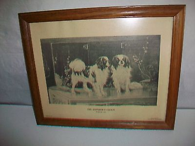 Framed Print Picture Emperor's Choice by Wardle Japanese Chin Dogs