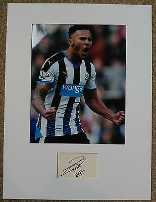 Jamaal Lascelles Authentic Hand Signed Newcastle United Display AFTAL Football