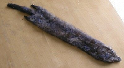 Real Great Antique Vintage Mink Collar Wrap Stole Complete Body Tail Legs