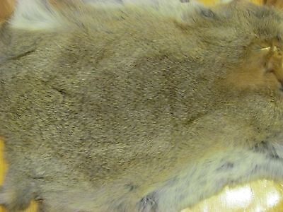 Rabbit Brown  Fur Pelts Tanned For  Crafts Sewing Free Shipping 10 Or More