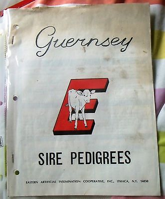 Guernsey Sire Pedigrees Eastern Artificial Insemination  Records Info Barn Fresh