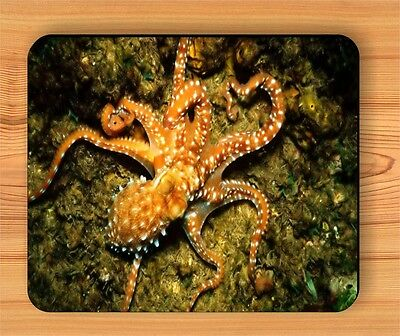 SEA LIFE OCTOPUS CEPHALOPOD MOUSE PAD -ecv5Z