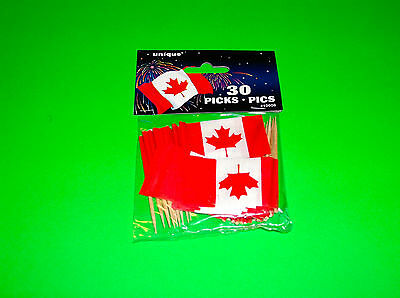 Canada Flag Olympic Hockey Support Your Team Toothpicks