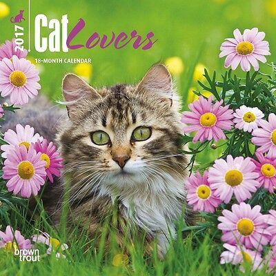 """Cat Lovers 2017 MINI WALL CALENDAR Browntrout 7"""" X 7"""