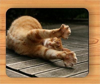 CAT AFTER NAP STRETCHING RELAX MOUSE PAD -hbn8Z