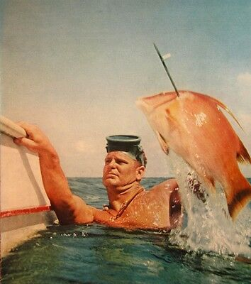 ART PINDER clipping 1950s skin-diver color photo King of Sling spearfishing USA