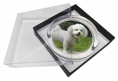 Bichon Frise Dog Glass Paperweight in Gift Box Christmas Present, AD-BF2PW