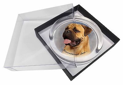 Bullmastiff Dog-With Love Glass Paperweight in Gift Box Christmas Pr, AD-BMT1uPW