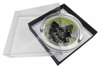 """Black Chihuahua """"Yours Forever..."""" Glass Paperweight in Gift Box Chri, AD-CH4yPW"""