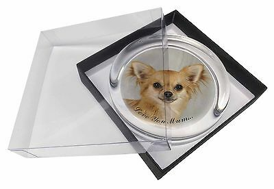 Chihuahua 'Love You Mum' Glass Paperweight in Gift Box Christmas Pr, AD-CH6lymPW