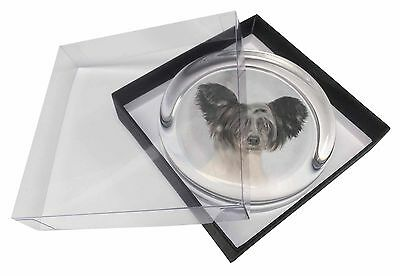 Chinese Crested Dog Glass Paperweight in Gift Box Christmas Present, AD-CHC1PW
