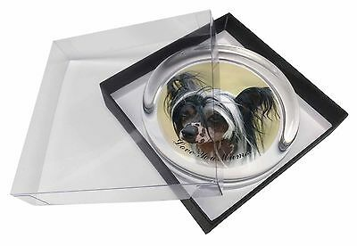 Chinese Crested Dog 'Love You Mum' Glass Paperweight in Gift Box C, AD-CHC2lymPW