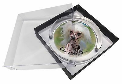 "Chinese Crested Dog ""Yours Forever..."" Glass Paperweight in Gift Box, AD-CHC4yPW"
