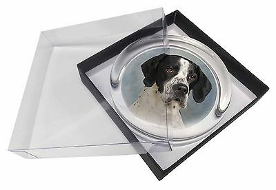 English Pointer Dog Glass Paperweight in Gift Box Christmas Present, AD-EP1PW