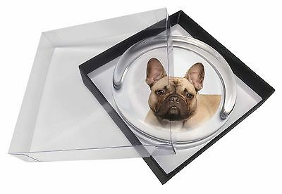 French Bulldog Glass Paperweight in Gift Box Christmas Present, AD-FBD2PW