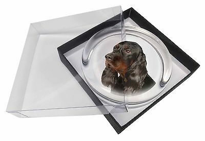 Gordon Setter Dog Glass Paperweight in Gift Box Christmas Present, AD-GOR1PW
