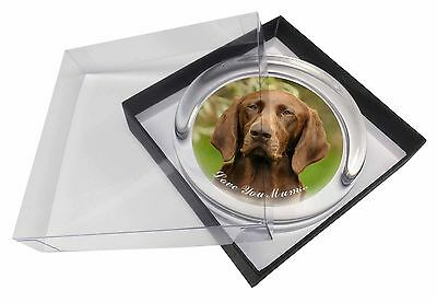 German Pointer Dog 'Love You Mum' Glass Paperweight in Gift Box Ch, AD-GSP1lymPW