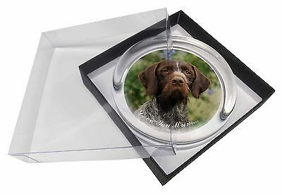 German Wirehaired Pointer 'Love You Mum' Glass Paperweight in Gift, AD-GWP1lymPW