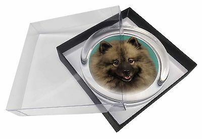 Keeshond Dog Glass Paperweight in Gift Box Christmas Present, AD-KEE1PW