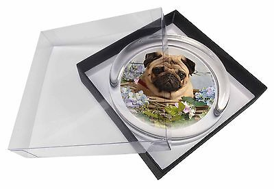 Fawn Pug Dog in a Basket Glass Paperweight in Gift Box Christmas Prese, AD-P96PW