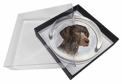 German Pointer Dog Glass Paperweight in Gift Box Christmas Present, AD-PG2PW