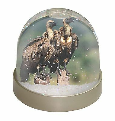 Vultures on Watch Photo Snow Dome Waterball Stocking Filler Gift, AB-92GL