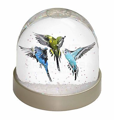 Budgerigars, Budgies in Flight Photo Snow Dome Waterball Stocking Fille, AB-94GL