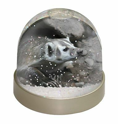 Badger on Watch Photo Snow Dome Waterball Stocking Filler Gift, ABA-2GL