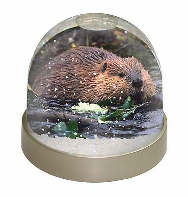River Beaver Photo Snow Dome Waterball Stocking Filler Gift, ABV-1GL