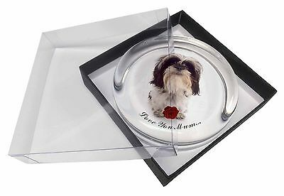 Shih Tzu with Rose 'Love You Mum' Glass Paperweight in Gift Box Ch, AD-SZ3RlymPW