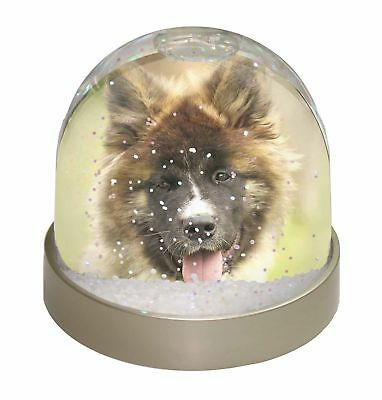 Beautiful Akita Dog Photo Snow Dome Waterball Stocking Filler Gift, AD-A4GL