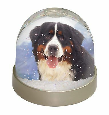 Bernese Mountain Dog Photo Snow Dome Waterball Stocking Filler Gift, AD-BER6GL