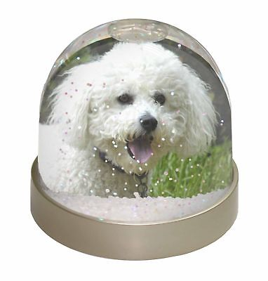 Bichon Frise Dog Photo Snow Dome Waterball Stocking Filler Gift, AD-BF2GL