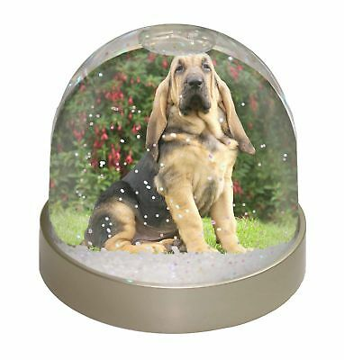 Bloodhound Dog Photo Snow Dome Waterball Stocking Filler Gift, AD-BL1GL