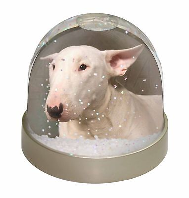 Bull Terrier Dog Photo Snow Dome Waterball Stocking Filler Gift, AD-BUT1GL
