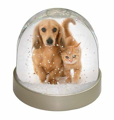 Dachshund Dog and Kitten Photo Snow Dome Waterball Stocking Filler Gif, AD-DU1GL