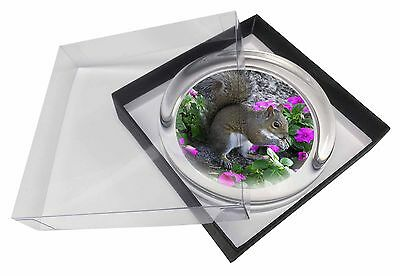 Squirrel by Flowers Glass Paperweight in Gift Box Christmas Present, AS-1PW