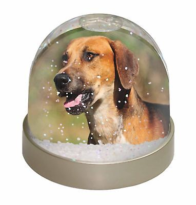 Foxhound Dog Photo Snow Dome Waterball Stocking Filler Gift, AD-FH1GL