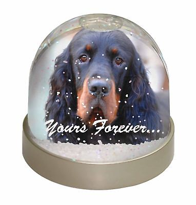 Gordon Setter 'Yours Forever' Photo Snow Dome Waterball Stocking Fil, AD-GOR2yGL