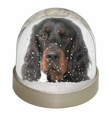 Gordon Setter Photo Snow Dome Waterball Stocking Filler Gift, AD-GOR3GL