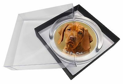 Hungarian Vizsla 'Love You Dad' Glass Paperweight in Gift Box Christm, DAD-126PW
