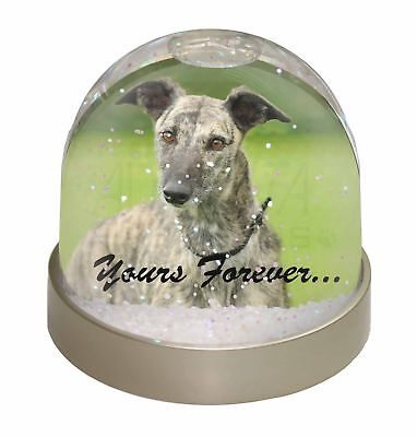 Greyhound Dog 'Yours Forever' Photo Snow Globe Waterball Stocking Fil, AD-LU7yGL