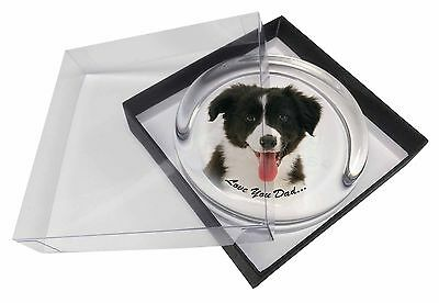Border Collie Pup 'Love You Dad' Glass Paperweight in Gift Box Christm, DAD-17PW