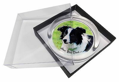 Border Collie Dog 'Love You Dad' Glass Paperweight in Gift Box Christm, DAD-18PW